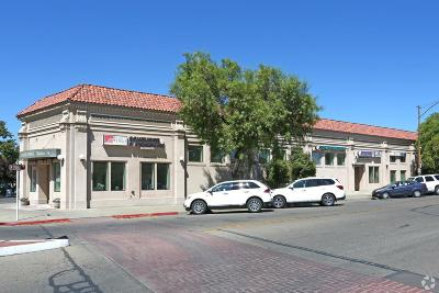 Patterson Commercial For Sale: 11 Plaza Circle