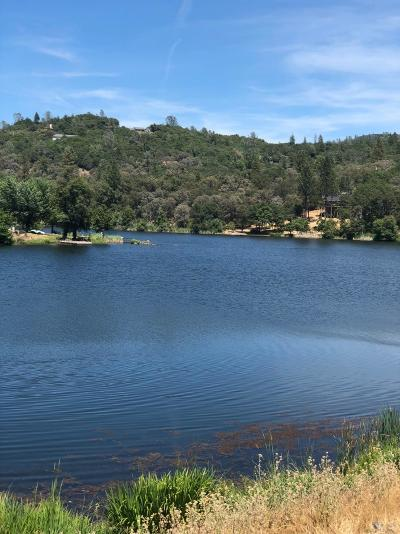 Grass Valley Residential Lots & Land For Sale: 12825 Woodlake