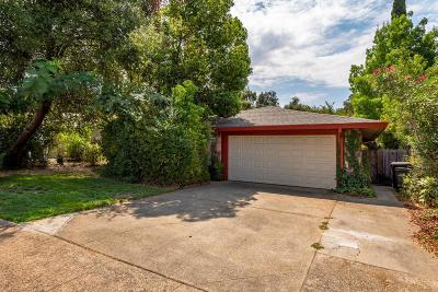 Orangevale Single Family Home For Sale: 8448 Cortadera Drive