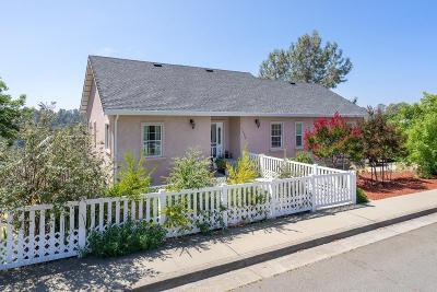 Placerville Single Family Home For Sale: 1530 Barrett Drive