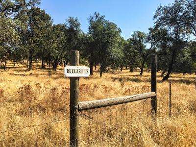 Shingle Springs Residential Lots & Land For Sale: 4564 Bullard Drive