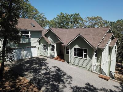 Grass Valley Single Family Home For Sale: 14266 Rattlesnake Ridge Drive