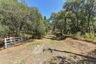 El Dorado Hills Residential Lots & Land For Sale: 1140 Wolf Creek Road