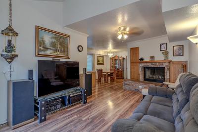Sacramento Single Family Home For Sale: 7340 Kallie Kay Lane