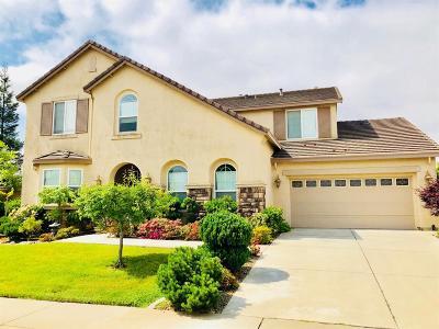 Rancho Cordova Single Family Home For Sale: 3580 Debina Court