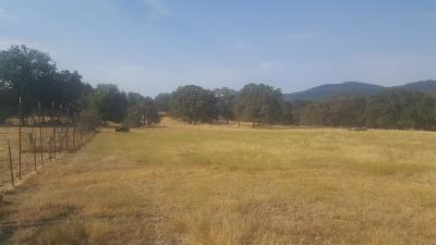 Placerville Residential Lots & Land For Sale: Lakeview Drive