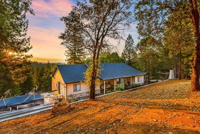 Placer County Single Family Home For Sale: 20647 Birchwood Drive