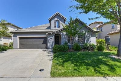 Folsom Single Family Home For Sale: 1079 Elsworth Way