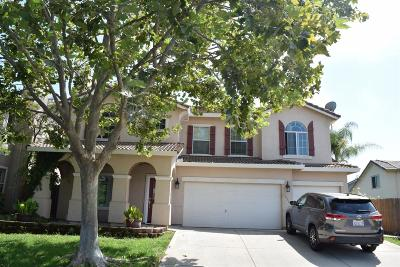 Rocklin Single Family Home For Sale: 6529 Turnstone Way