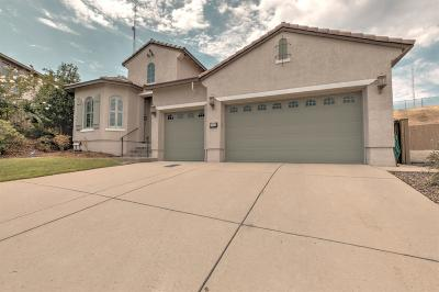Folsom Single Family Home For Sale: 2048 Branding Iron Court
