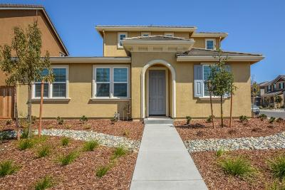 Sacramento Single Family Home For Sale: 7862 Messara Way