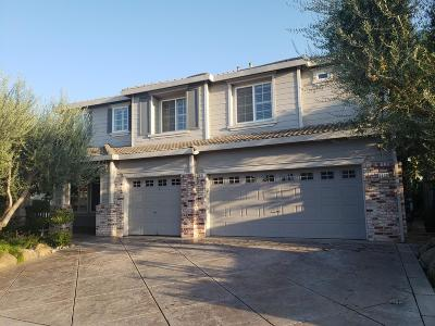 Stockton Single Family Home For Sale: 8938 Bergamo Circle