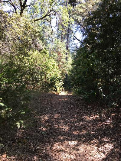 Placerville Residential Lots & Land For Sale: Miracle Mountain Dr
