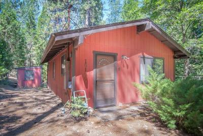 Grass Valley Single Family Home For Sale: 10100 Norambagua