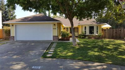 Elk Grove Single Family Home For Sale: 9389 Windy Fen Court