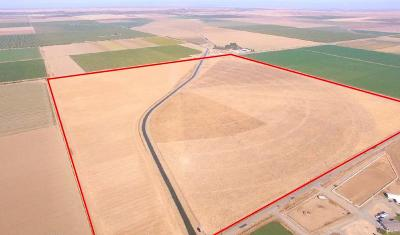 Yolo County Commercial Lots & Land For Sale: R2w Por Sec 1