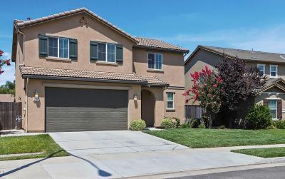 Stockton Single Family Home For Sale: 2723 Twin Bridges Lane