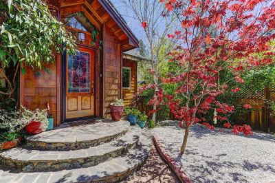 Nevada City Single Family Home For Sale: 10655 Park Avenue Extension