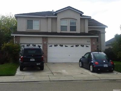 Stockton Single Family Home For Sale: 4132 Black Butte Circle