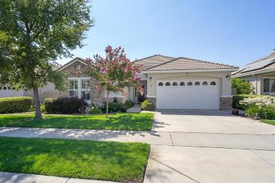 El Dorado Hills Single Family Home For Sale: 4828 Monte Mar Drive