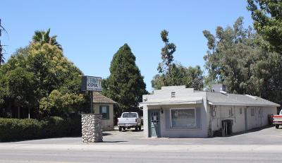 Escalon Commercial For Sale: 1199 Escalon Avenue