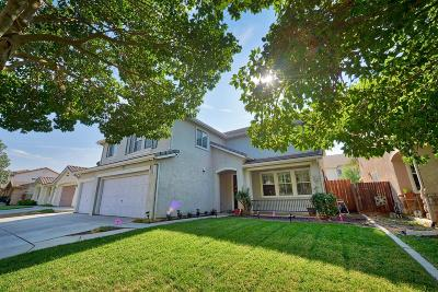Patterson Single Family Home For Sale: 729 Skimmer Drive