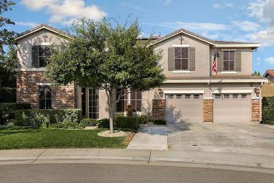 Lincoln Single Family Home For Sale: 1219 Davmore Lane