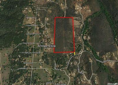 El Dorado Hills Residential Lots & Land For Sale: 80 Acres Hickok Rd