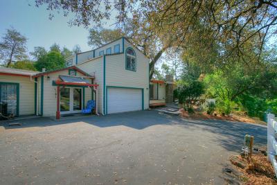 Auburn Single Family Home For Sale: 990 Auburn Ravine Rd