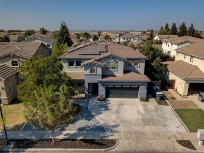 Patterson Single Family Home For Sale: 1355 Cliff Swallow Drive