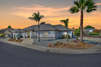 Manteca Single Family Home For Sale: 969 Spring Meadow Drive