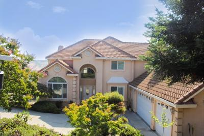 El Dorado Hills Single Family Home For Sale: 3247 Warren Lane