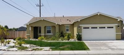 Manteca Single Family Home For Sale: 1101 Vesuvio Street