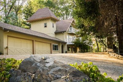 Grass Valley Single Family Home For Sale: 12032 Hidden Valley Road