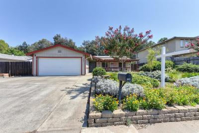 Sacramento Single Family Home For Sale: 3491 Nut Plains Drive