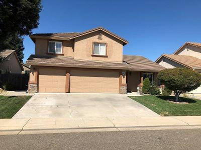 Elk Grove Single Family Home For Sale: 8776 Vytina Drive