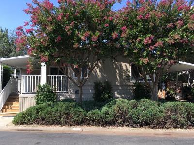 Rancho Murieta Single Family Home For Sale: 7346 Bella Union Court
