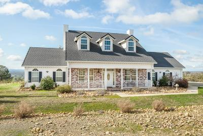 Valley Springs Single Family Home For Sale: 270 Ridgeview