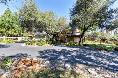 Shingle Springs Single Family Home For Sale: 3545 Meder Road