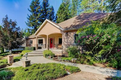 Grass Valley Single Family Home For Sale: 932 Freeman Lane
