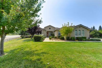 Sacramento Single Family Home For Sale: 8024 Sparrow Cove Place