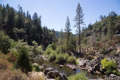 Meadow Vista Single Family Home For Sale: 3440 Cedar Springs Lane