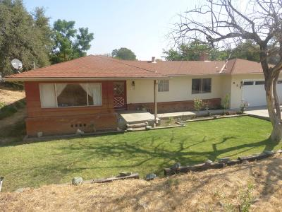 Valley Springs Single Family Home For Sale: 222 Chestnut St