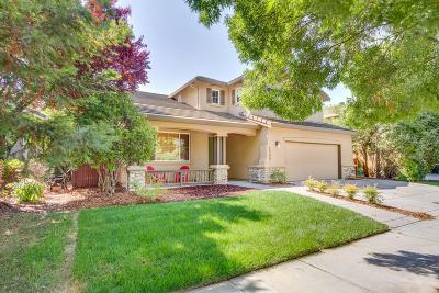 Davis Single Family Home For Sale: 4000 Arroyo Avenue