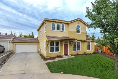 Single Family Home For Sale: 737 Ward Way