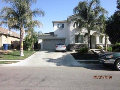 Patterson Single Family Home For Sale: 1425 Jake Creek Drive