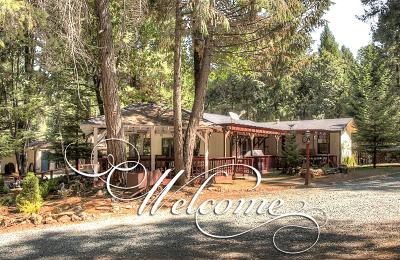El Dorado County Single Family Home For Sale: 5181 Volcanoville Road