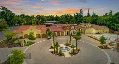 Sacramento Single Family Home For Sale: 729 Estates Drive