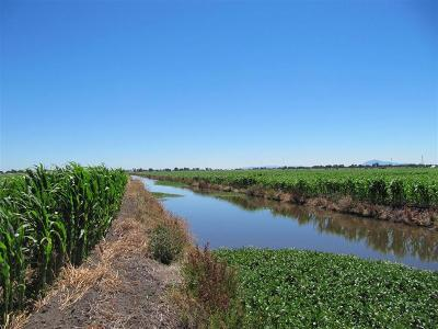 Sacramento County Commercial Lots & Land For Sale: Poverty Road