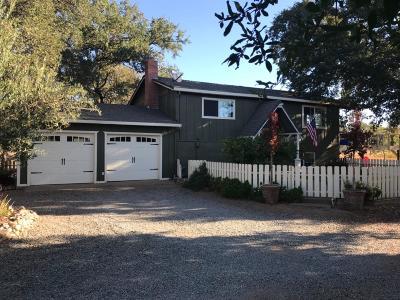 Valley Springs Single Family Home For Sale: 9629 Oak Glen Drive